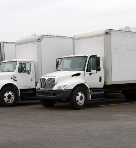 A line of white box trucks parked in a row.