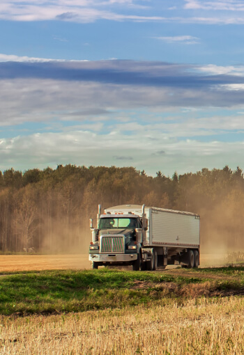 a semi truck carrying grain drives through a field